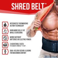 shred belt